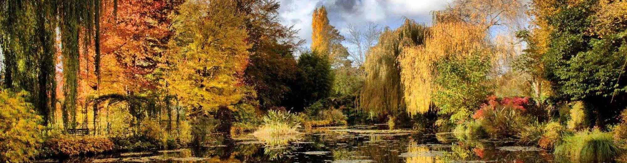 Франция. Живерни, Париж «Игра солнечных бликов на колышущейся глади воды»